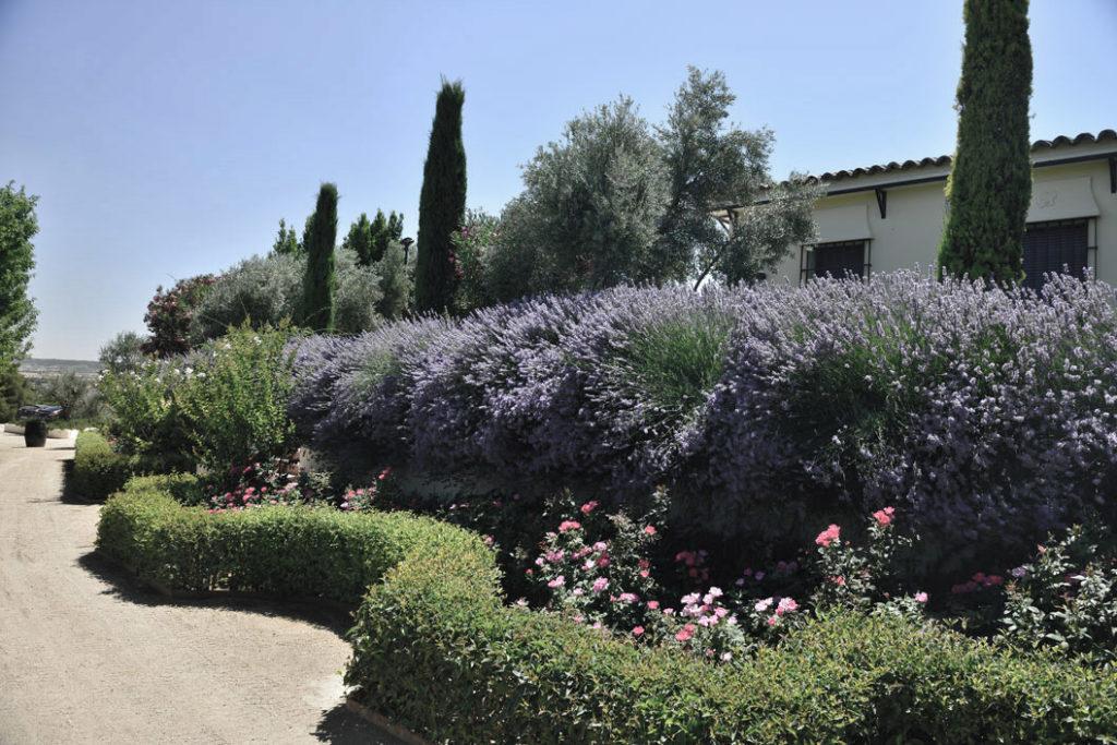 el_regajal-finca_para_bodas-jardines-wedding_style_magazine
