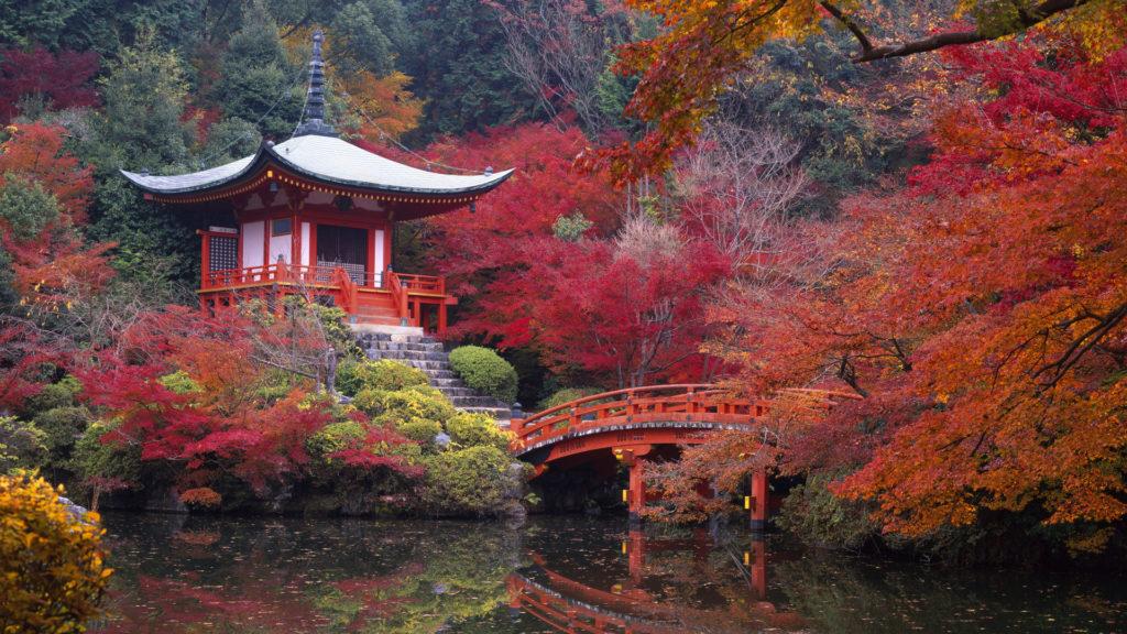 viaje-de-novios-a-japon