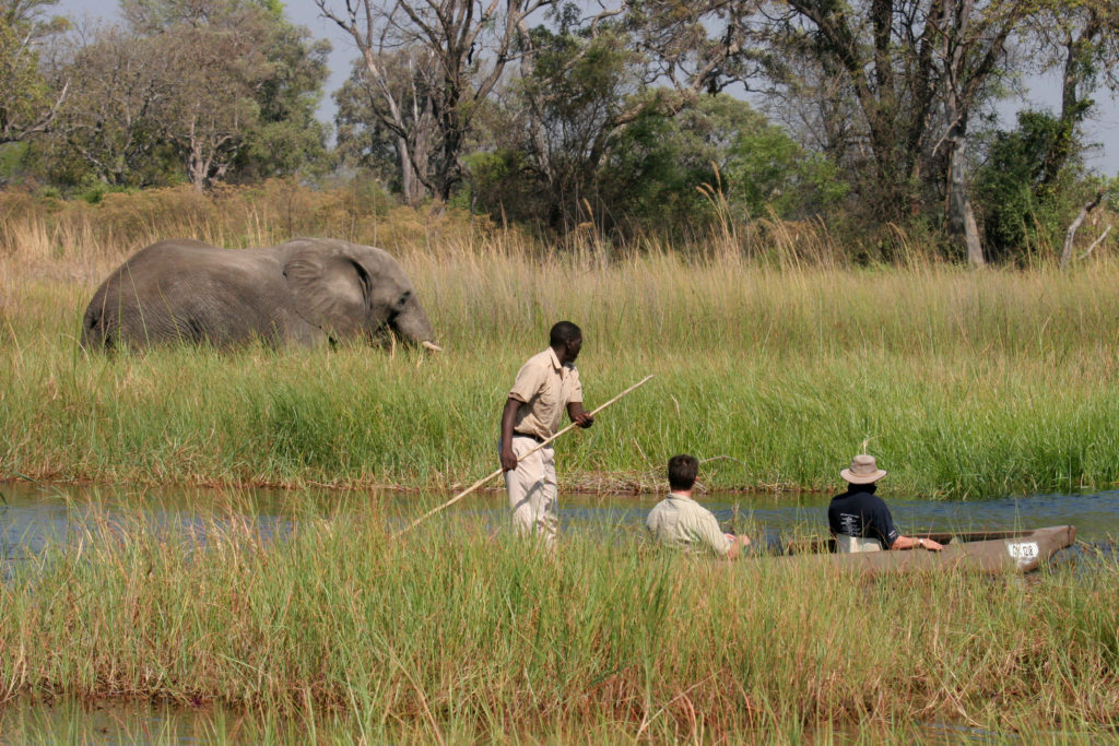 Mokoro-Botswana-Ratpanat